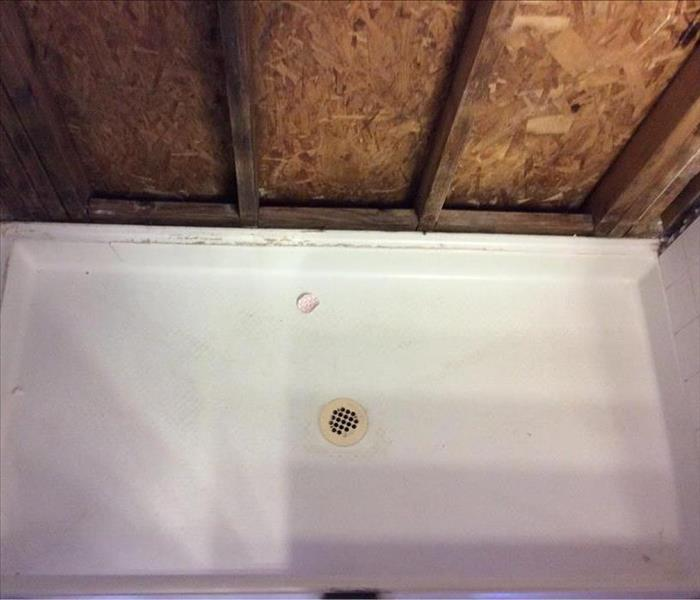 Mold Remediation in Elk Grove Home After