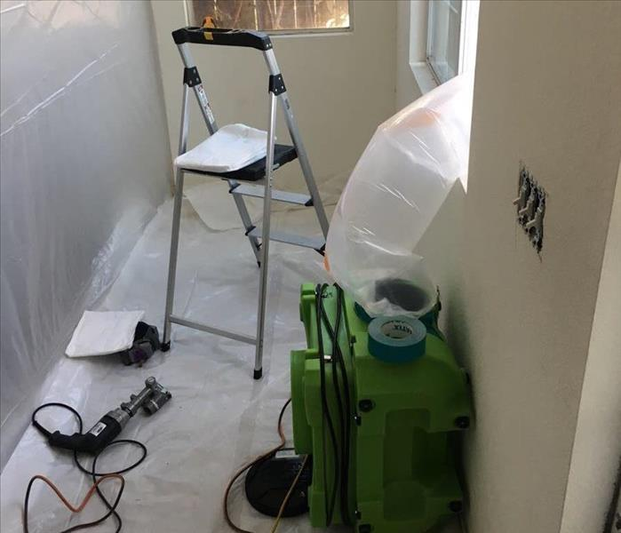 This is What Mold Remediation Looks Like