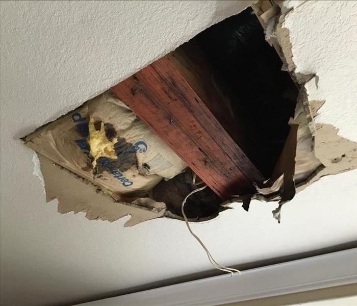 Black Mould On Bedroom Ceiling: Roof Leak Causes Water Damage In Sacramento Home