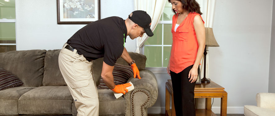 Sacramento, CA carpet upholstery cleaning